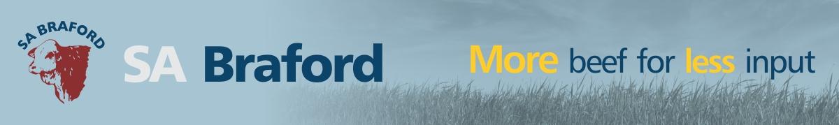 SA Braford Logo